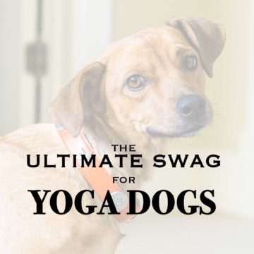 The Ultimate Swag for Yoga Dogs